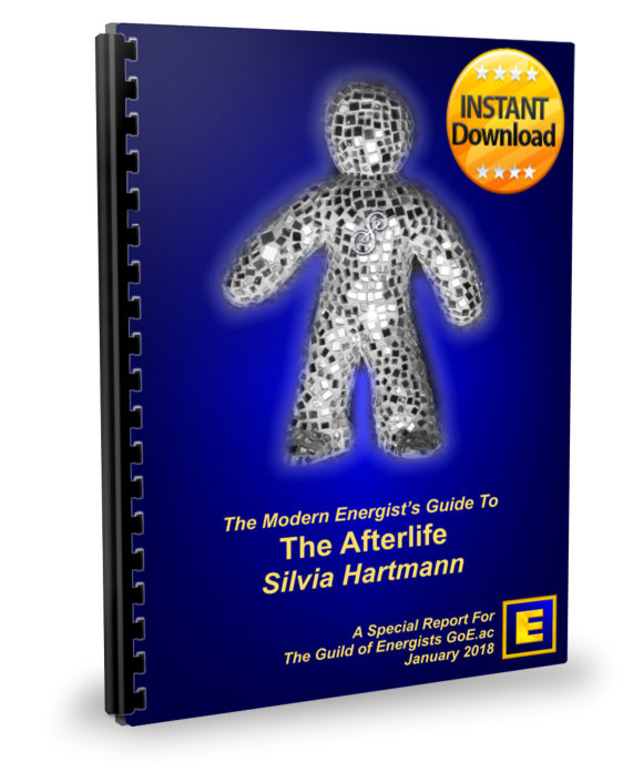 Afterlife Report Virtual Cover